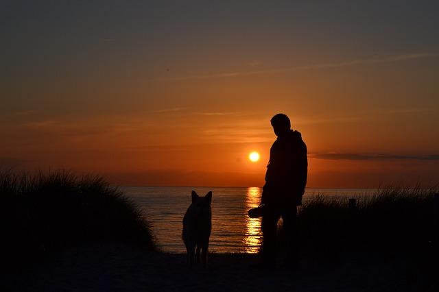 západ slunce se psem