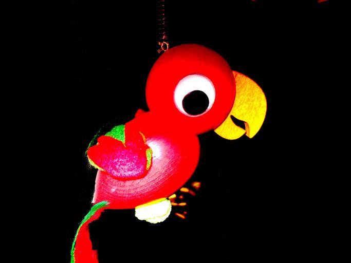 závěsný papoušek
